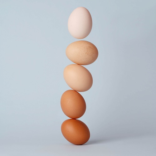 Pile of eggs.