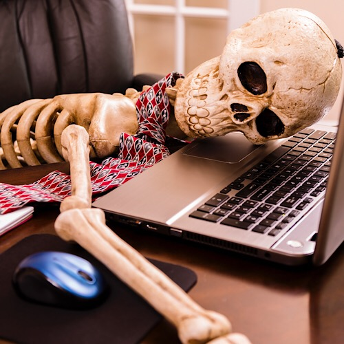 An image of a skeleton sitting in front of a laptop.