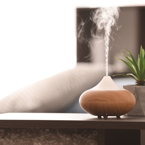 A diffuser on top of a side table beside a tiny plant.