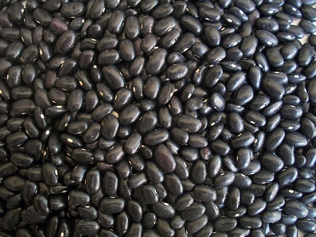 close up of black beans as protein source