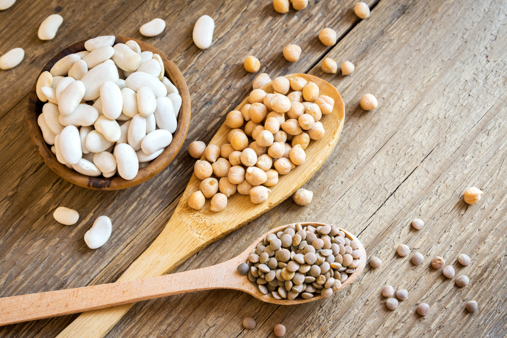 Assortment of Beans, examples of great veggie protein sources