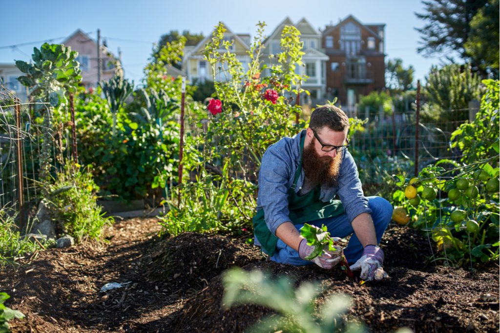 This man is engaging in environmental wellness by planting in his garden.