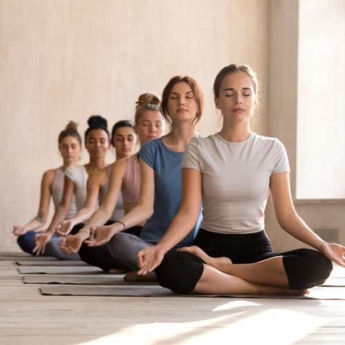 Fit diverse calm yogi sit in row meditating in lotus position in bright fitness studio,