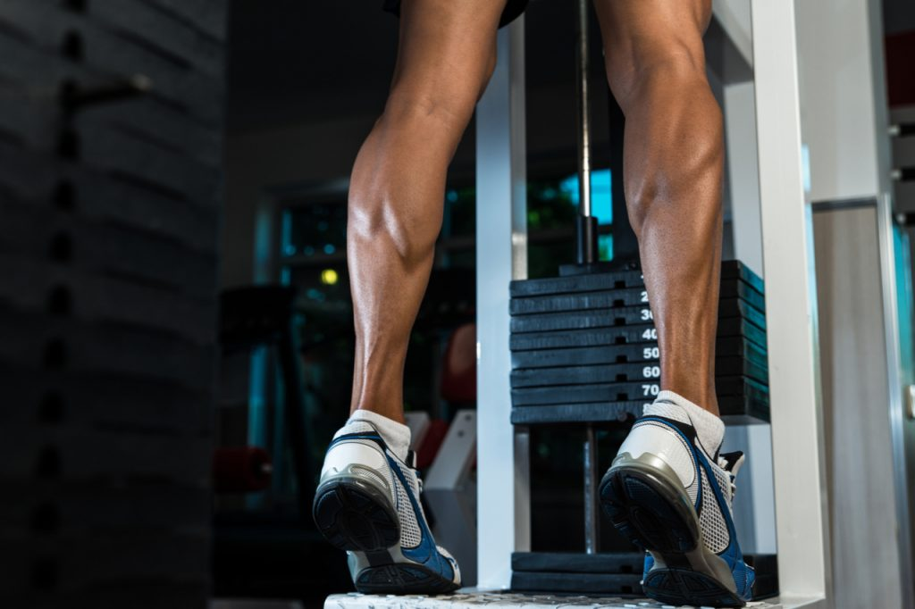 Image of a trained legs calves.
