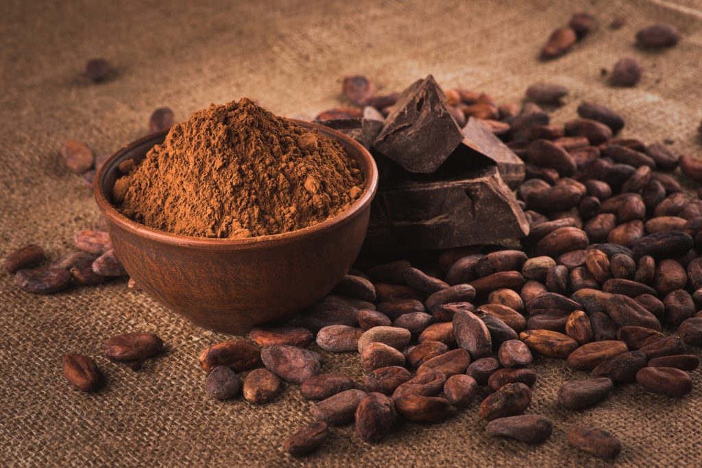 Raw cocoa beans, clay bowl with cocoa powder, chocolate on sacking source of cocoavia flavanol capsules.