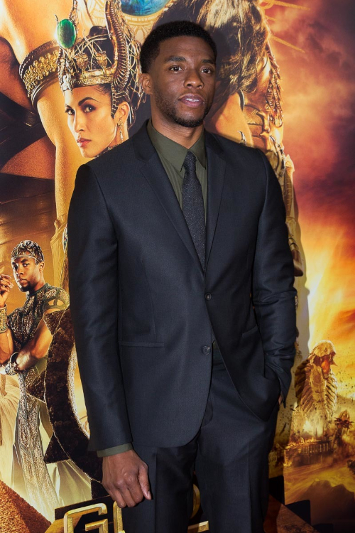 Chadwick Boseman on the red carpet for 'Gods of Egypt' in New York City on February 24, 2016.