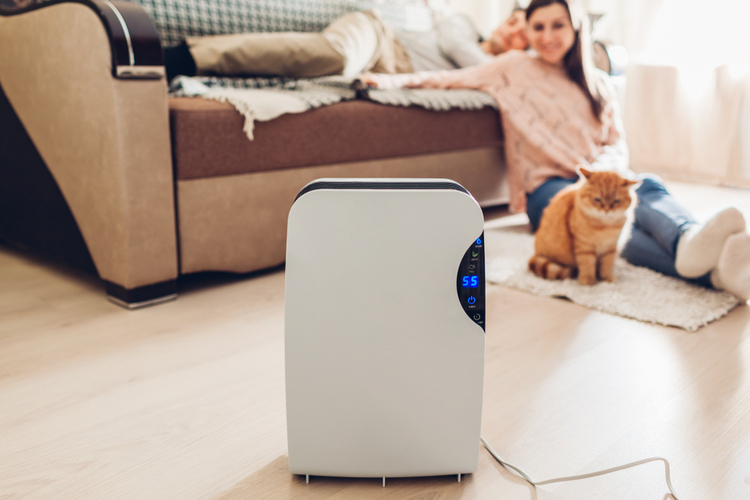 Couple and pet chilling in their living room with vollara freshair personal ionizer.
