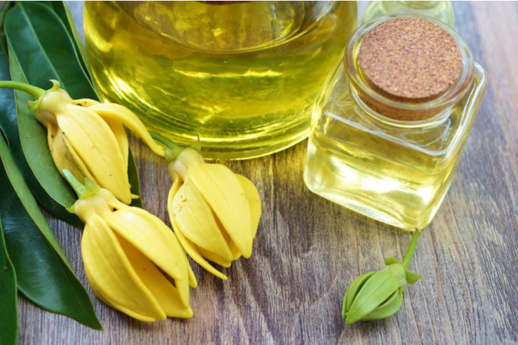 Ylang-ylang flower and essential oil.
