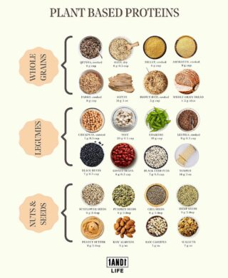 Guess what?!?  🗣 YOU CAN MEET YOUR PROTEIN NEEDS THROUGH A VEGAN/VEGETARIAN DIET! 🗣  Check out this infographic to find out which plant based foods contain protein. (PSA: You don't need to be vegan to have these. 😉)  They come with not only protein but also a load of vitamins, minerals, fiber and antioxidants. It's time to diversify your sources of protein! 💪🏾💪🏿💪🏻 #1AND1Way