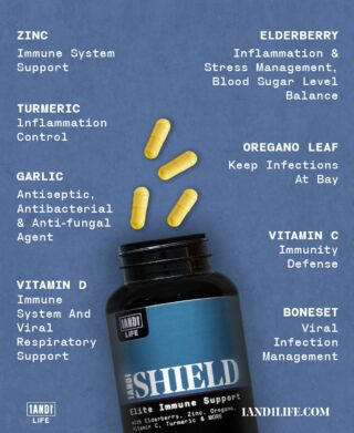"🛡1AND1 Shield🛡 Stemmed from our Co-founders being annoyed with having to order 6 or 7 different supplement bottles in order to create the immune support that they needed. ""There had to be another way..."" they thought.  Why not figure out a way to get all of these ingredients into one bottle, with one formula?   This is why 1AND1 Shield was born. 🛡 15 Ingredients (with proper daily dosage) in one daily formula 🛡 Elite Immune Support 🛡 Vegan, Gluten-Free, Non-GMO, and sourced from a GMP Certified Facility.  Replenish your Shield at the 🔗#LinkInBio🔗 #1AND1Way"